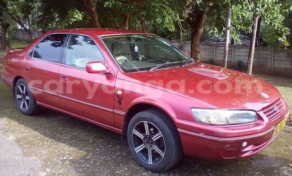 Buy Used Toyota Camry Red Car in Limbe in Malawi