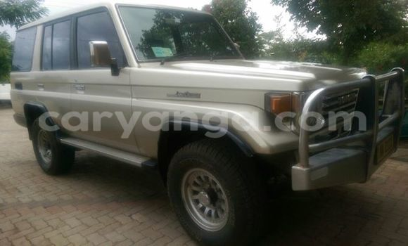 Buy Used Toyota Land Cruiser Silver Car in Limbe in Malawi