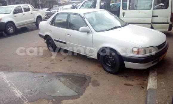 Buy Used Toyota Corolla White Car in Limbe in Malawi