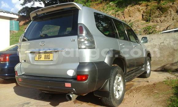 Buy Used Toyota Prado Silver Car in Limbe in Malawi