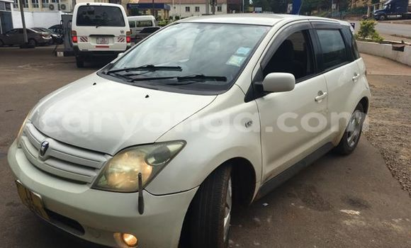 Buy Used Toyota IST White Car in Limbe in Malawi