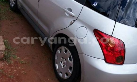 Buy Used Toyota IST Silver Car in Limbe in Malawi