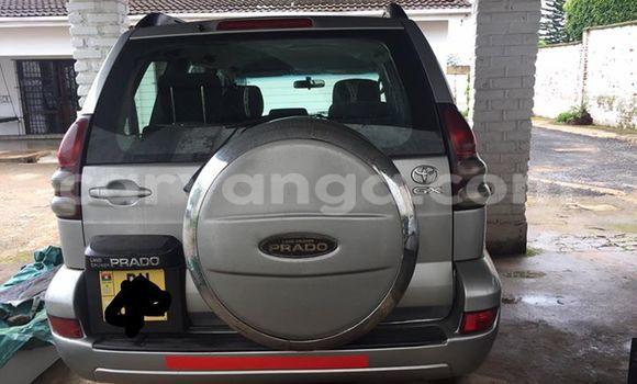 Buy Used Toyota Prado Silver Car in Limbe in Malawi