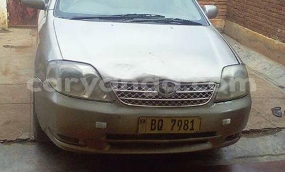 Buy Used Toyota Corolla Silver Car in Limbe in Malawi