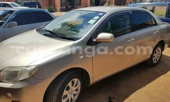 Buy Used Toyota Axio Other Car in Limbe in Malawi