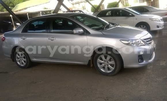 Buy Used Toyota Corolla Silver Car in Blantyre in Malawi