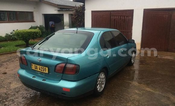 Buy Used Nissan Primera Other Car in Limbe in Malawi
