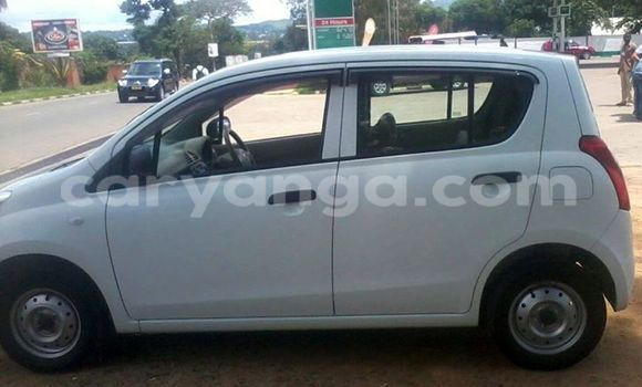 Buy Used Suzuki Alto White Car in Limbe in Malawi