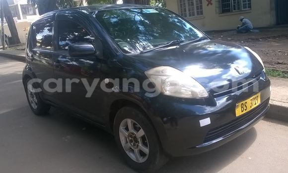 Buy Used Toyota Passo Black Car in Limbe in Malawi