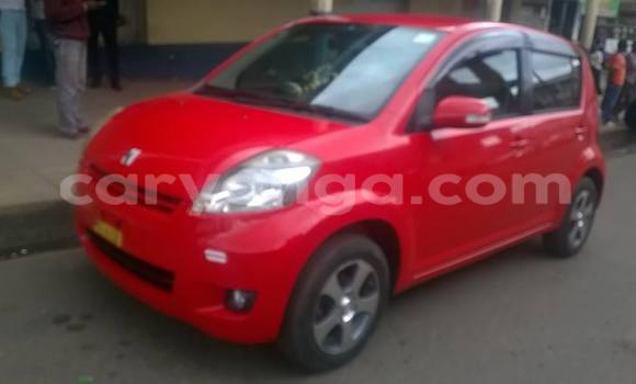 Buy Used Toyota Passo Red Car in Limbe in Malawi