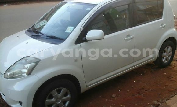 Buy Used Toyota Passo White Car in Limbe in Malawi