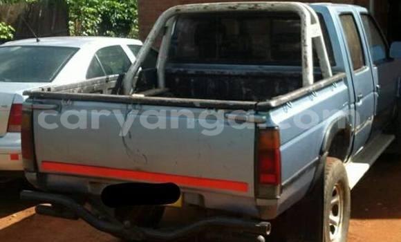 Buy Used Nissan Hardbody Blue Car in Limbe in Malawi