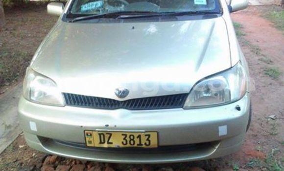 Buy Used Toyota Platz Silver Car in Limbe in Malawi