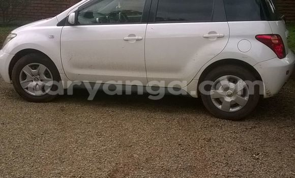 Buy Used Toyota IST White Car in Zomba in Malawi