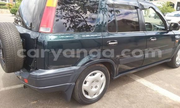 Buy Used Honda CR-V Other Car in Limbe in Malawi