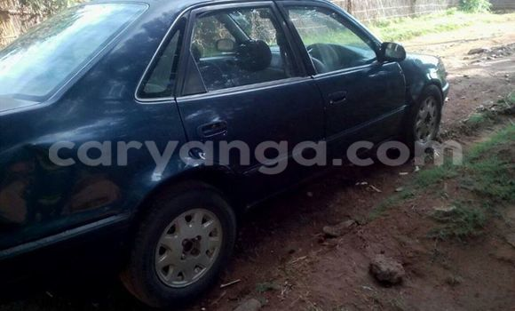 Buy Used Toyota Corolla Blue Car in Limbe in Malawi