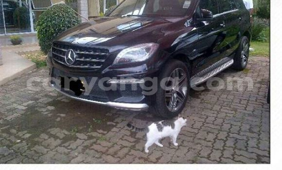 Buy Used Mercedes‒Benz ML–Class Black Car in Limbe in Malawi