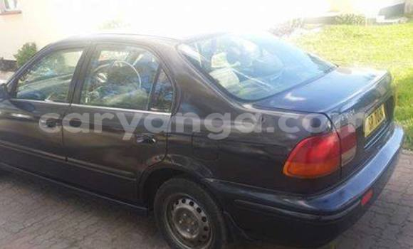 Buy Used Honda Accord Black Car in Blantyre in Malawi