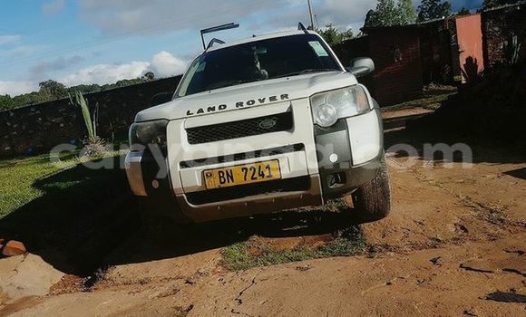 Buy Used Land Rover Freelander White Car in Limbe in Malawi