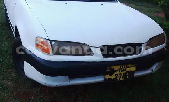 Buy Used Toyota Sprinter White Car in Limbe in Malawi