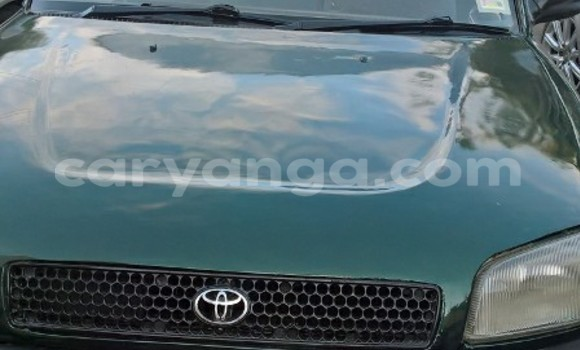 Buy Used Toyota RAV4 Green Car in Limbe in Malawi