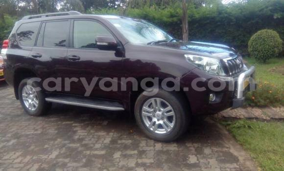 Buy Used Toyota Land Cruiser Prado Other Car in Limbe in Malawi