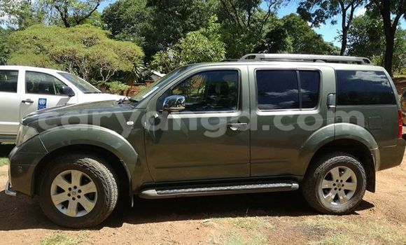 Buy Used Nissan Pathfinder Other Car in Limbe in Malawi