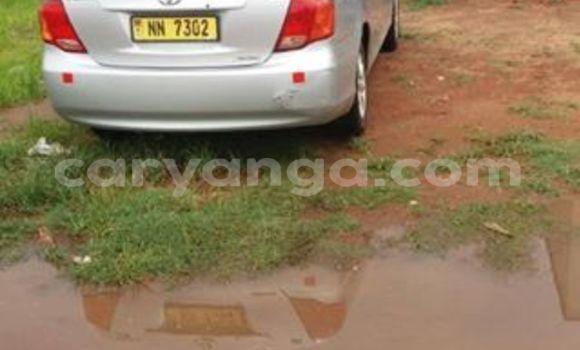 Buy Used Toyota Axio Silver Car in Limbe in Malawi