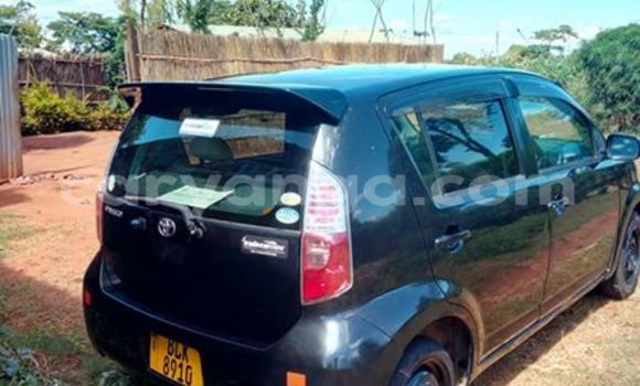 Buy Used Toyota Paseo Black Car in Limbe in Malawi