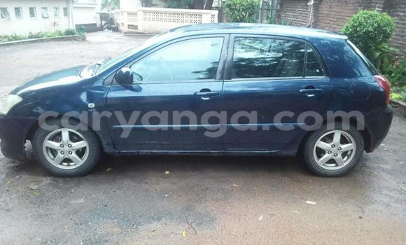 Buy Used Toyota Runx Black Car in Limbe in Malawi