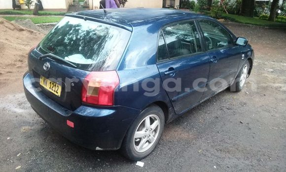 Buy Used Toyota Runx Blue Car in Limbe in Malawi