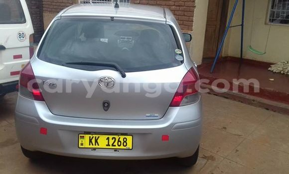 Buy Used Toyota Vitz Silver Car in Blantyre in Malawi