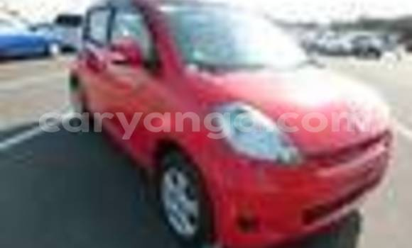 Buy New Toyota Passo Red Car in Blantyre in Malawi