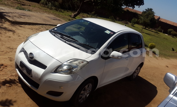 Buy New Toyota Vitz White Car in Lilongwe in Malawi
