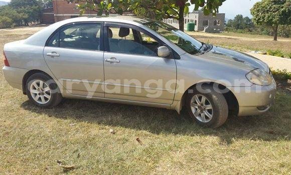 Buy Used Toyota 4Runner Other Car in Nkhotakota in Malawi