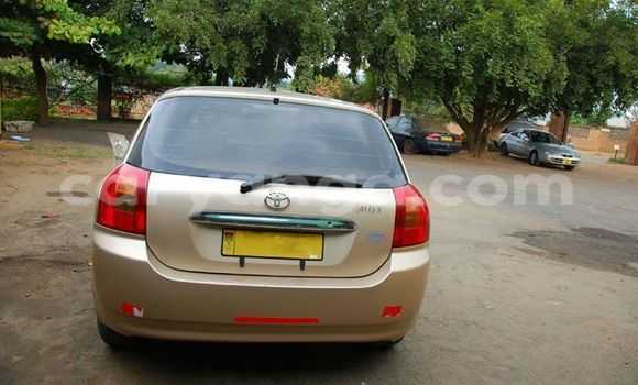 Buy Used Toyota Allex Other Car in Limete in Malawi
