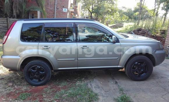 Buy Used Nissan X–Trail Silver Car in Limete in Malawi