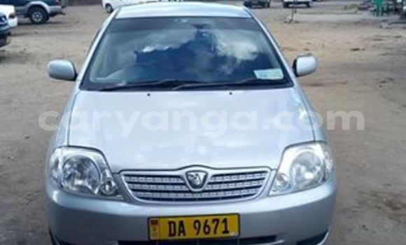 Buy Used Toyota Allex Silver Car in Limete in Malawi