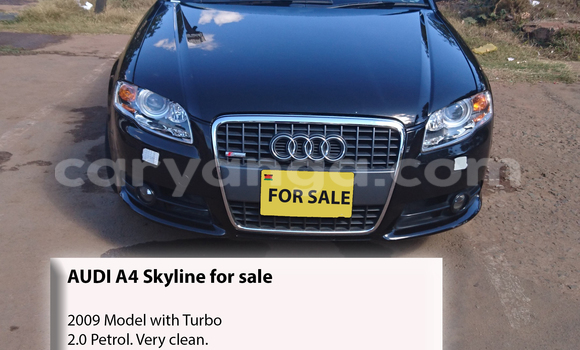 Buy Used Audi A4 Black Car in Lilongwe in Malawi