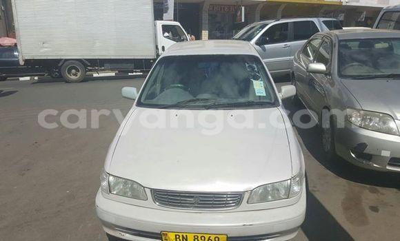 Buy Used Toyota Corolla White Car in Limete in Malawi