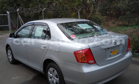 Buy Used Toyota Axio Silver Car in Blantyre in Malawi