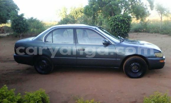 Buy Used Toyota Corolla Other Car in Limete in Malawi
