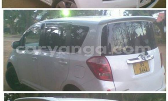 Buy Used Toyota Ractis White Car in Blantyre in Malawi