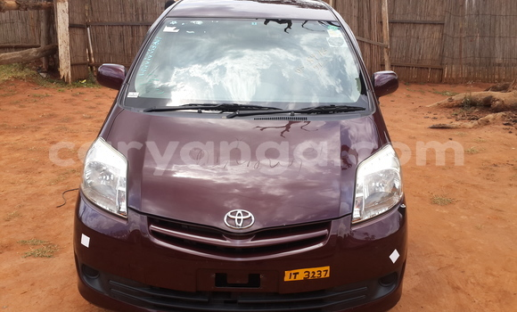 Buy New Toyota Passo Brown Car in Limete in Malawi