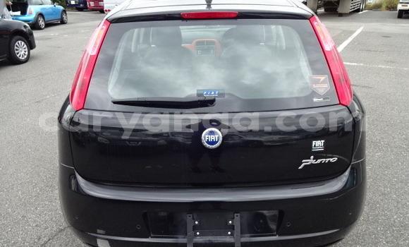 Buy Used Fiat Punto Black Car in Lilongwe in Malawi