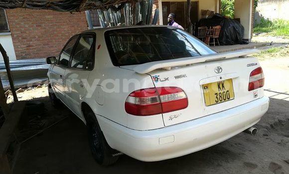 Buy Used Toyota Corolla White Car in Lilongwe in Malawi