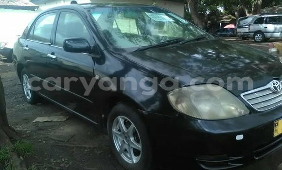 Buy Used Toyota Corolla Black Car in Lilongwe in Malawi