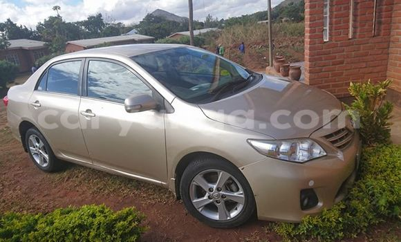 Buy Used Toyota 4Runner Other Car in Lilongwe in Malawi
