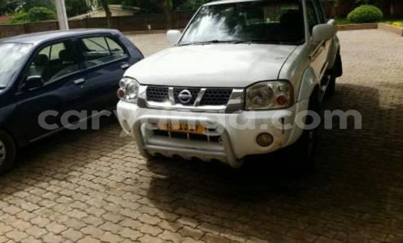 Buy Used Nissan Hardbody White Car in Lilongwe in Malawi