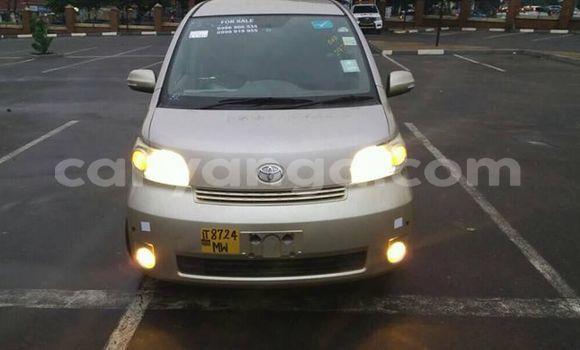 Buy Used Toyota Porte Silver Car in Lilongwe in Malawi